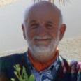 Mario Bolognese
